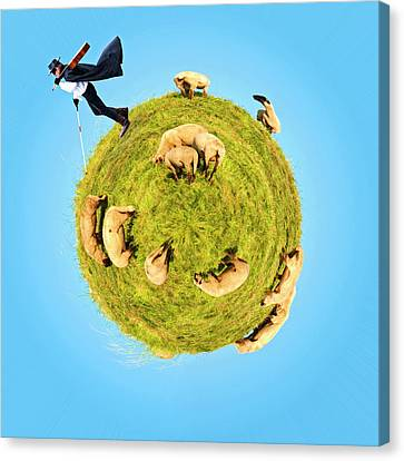 Only One Black Sheep? Canvas Print by Rolando Ruffinengo