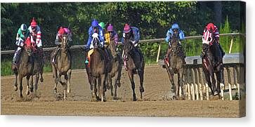 Only One Winner Canvas Print by Betsy Knapp