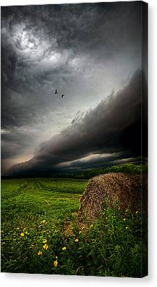 Only Time Canvas Print by Phil Koch