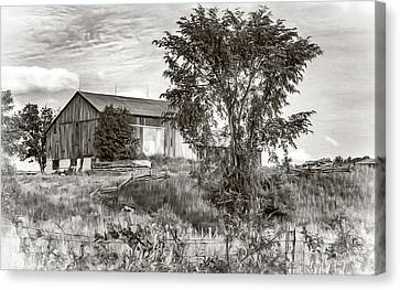 Ontario Barn 2 - Bw Canvas Print by Steve Harrington