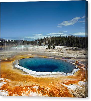 Opal Pool Canvas Print by Amateur photographer, still learning...