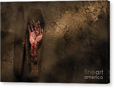 Open Case Of Revenge Canvas Print by Jorgo Photography - Wall Art Gallery