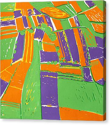 Open Field Orange Canvas Print by Toni Silber-Delerive