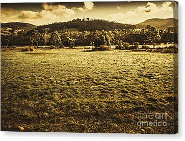 Open Fields Of Woodstock Tasmania Canvas Print