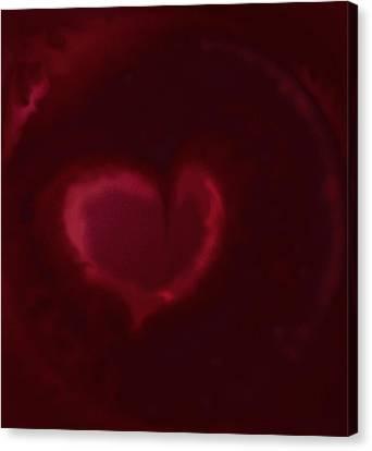 Open Heart Canvas Print by Eileen Shahbazian