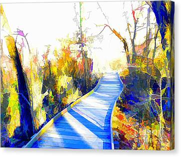 Open Pathway Meditative Space Canvas Print by Robyn King