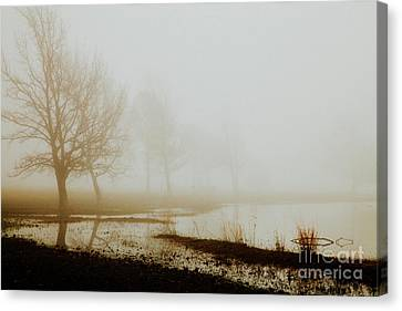 Canvas Print featuring the photograph Open Space by Iris Greenwell