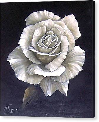 Opened Rose Canvas Print by Natalia Tejera