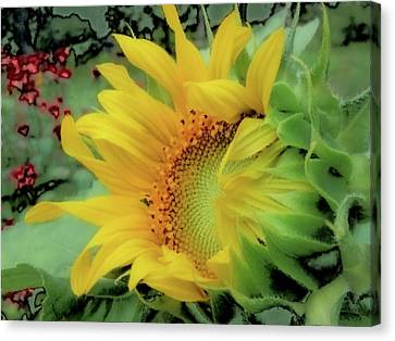 Opening Day - Sunflower - Brush Strokes Canvas Print