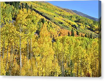 Canvas Print featuring the photograph Ophir Road Hillside by Ray Mathis