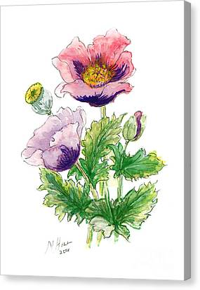 Opium Poppy Canvas Print by Nell Hill