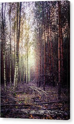 Canvas Print featuring the photograph Opposition by Dmytro Korol