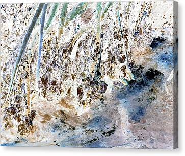 Mangrove Shoreline Canvas Print