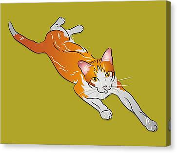 Orange And White Tabby Cat Canvas Print by MM Anderson
