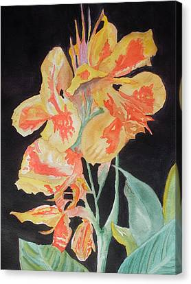 Orange And Yellow Canna Lily On Black Canvas Print by Warren Thompson