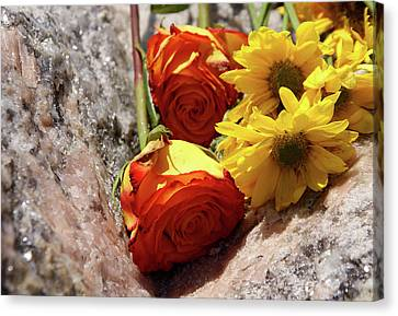 Orange And Yellow On Pink Granite Canvas Print
