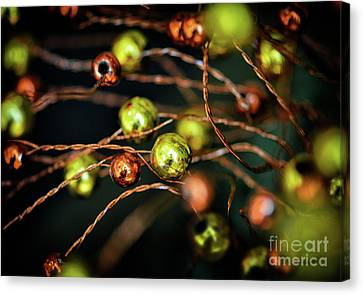 Orange And Yellow Canvas Print by Stephan Grixti