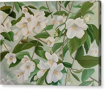 Orange Blossoms Canvas Print by Angeles M Pomata