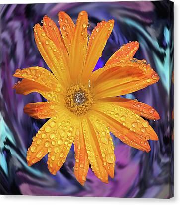 Orange Daisy Swirl Canvas Print