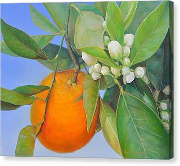 Orange En Bouton Canvas Print by Muriel Dolemieux