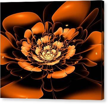 Orange Flower  Canvas Print by Anastasiya Malakhova