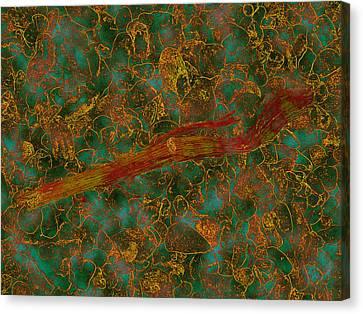 Orange-green Flotsam Canvas Print by Dan McCarthy