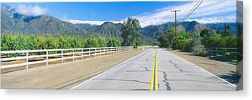Genus Canvas Print - Orange Groves & Snow On Topa Topa by Panoramic Images