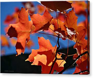 Orange Leaves Canvas Print by Mikki Cucuzzo