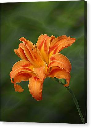 Orange Lilly Canvas Print by Rick Friedle