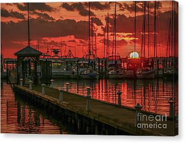 Orange Marina Sunrise Canvas Print by Tom Claud