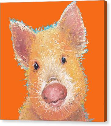 Pigs Canvas Print - Pig Painting On Orange Background by Jan Matson
