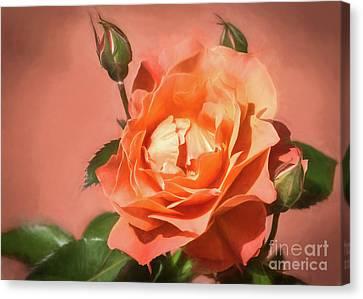 Orange Poetry Canvas Print by Janice Rae Pariza