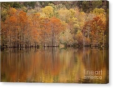 Canvas Print featuring the photograph Orange Pool by Iris Greenwell