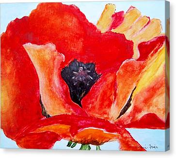 Orange Poppy Canvas Print by Jamie Frier