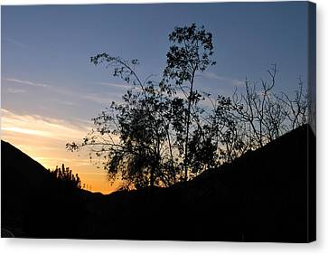 Canvas Print featuring the photograph Orange Sky Nature Silhouette by Matt Harang