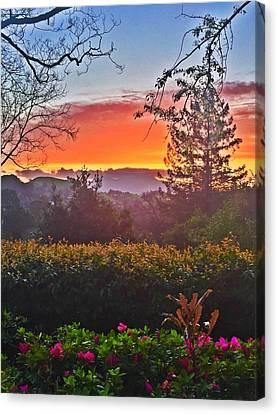 Orange Sunrise Canvas Print by Cadence Spalding