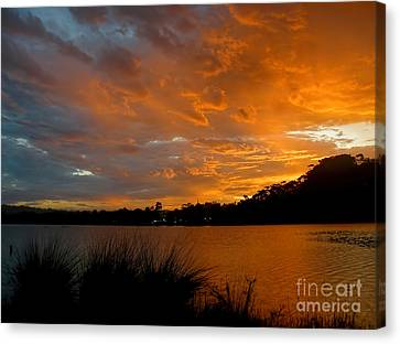 Orange Sunset Glow Canvas Print by Kaye Menner