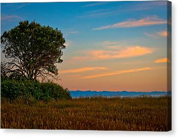 Orange Sunset With Tree Canvas Print