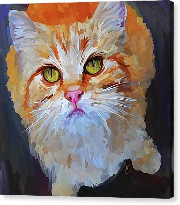 Orange Tabby Cat - Square Canvas Print by Jai Johnson