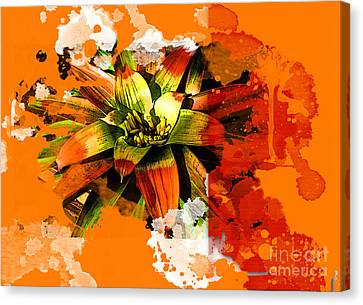 Orange Tropic Canvas Print
