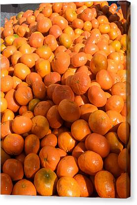 Oranges For Sale In Market, Essaouira Canvas Print by Panoramic Images