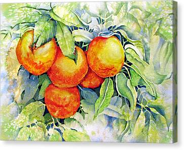 Oranges-in-italy Canvas Print by Nancy Newman
