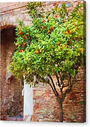 Malaga Canvas Print - Orangetree by Lutz Baar