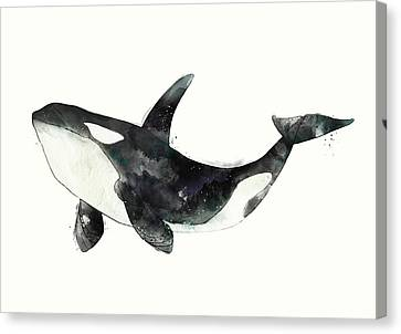 Whale Canvas Print - Orca From Arctic And Antarctic Chart by Amy Hamilton