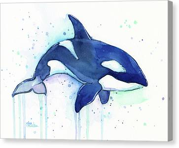 Orca Whale Watercolor Killer Whale Facing Right Canvas Print by Olga Shvartsur