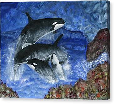 Orcas Family Frolicks Canvas Print by Tanna Lee M Wells