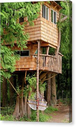 Orcas Island Treehouse Canvas Print by Art Block Collections
