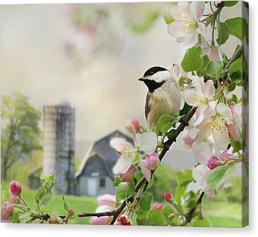 Orchard Visitor Canvas Print