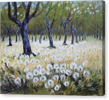 Canvas Print - Orchard With Dandelions by Irek Szelag