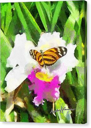 Orchid And Butterfly Canvas Print by Anthony Caruso